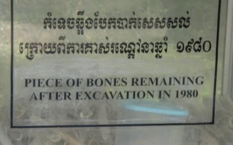 Victim Bones