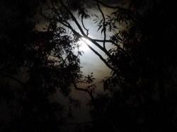 Moon 09