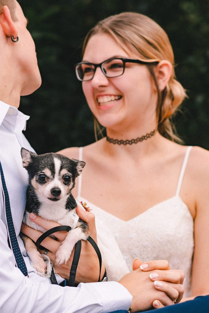 dog-on-elopement-day-suessmoments