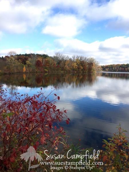 Minnesota Fall - 1