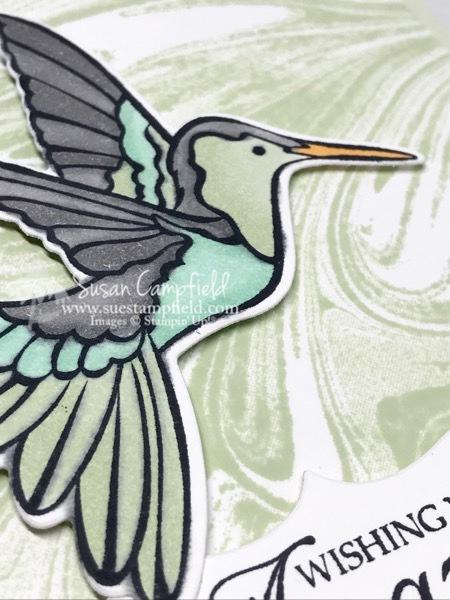 Stampin' Up! Humming Along Hummingbird Dies Marbled - 3