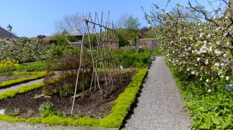 An orderly garden