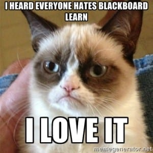 LOLcat and Blackboard
