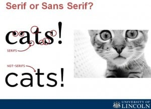 cats and serif or sans serif fonts