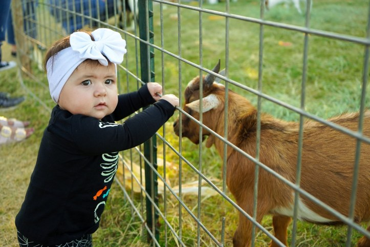 Baby Marion Jester-Montoya with a goat