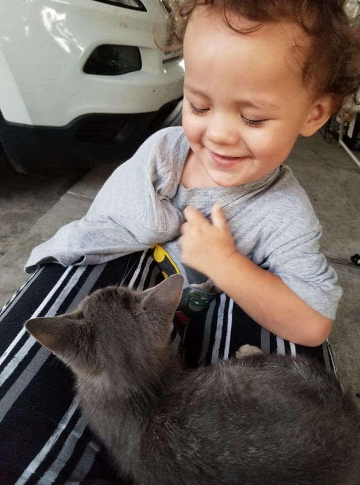 Christian Paz and a kitten