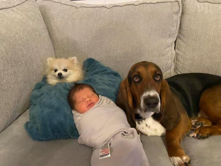 Dawson Jace McKinney and two dogs
