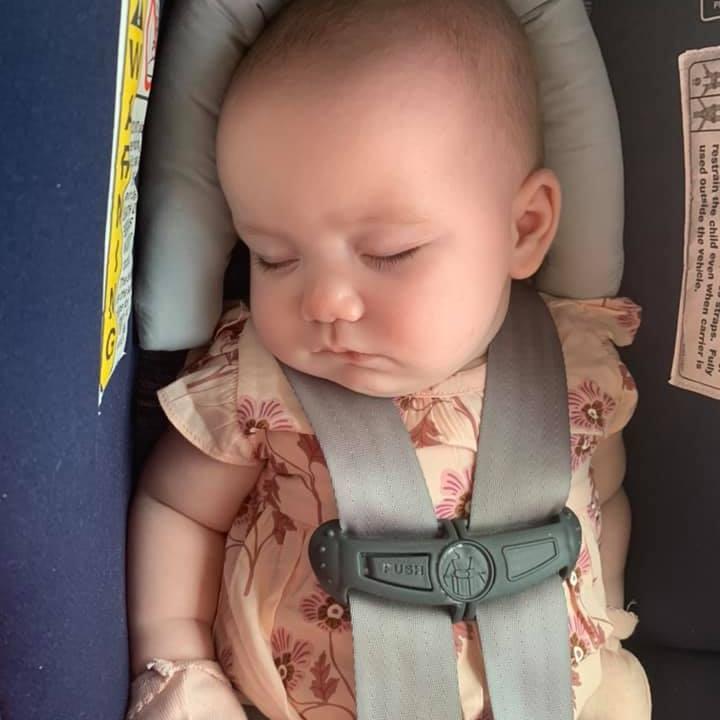 Sleepy Emmy. (Facebook)