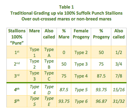 Table 1 Grading Up 16 font
