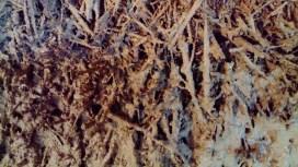 Close-up of slurry coat