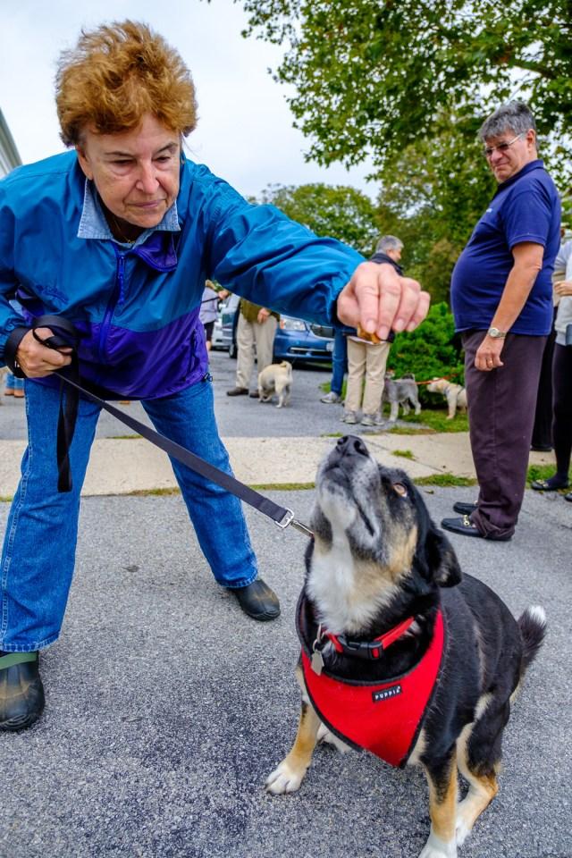 Chaeryl Tortoriello of Orient with her dog, Kodiak. (Credit: Jeremy Garretson)