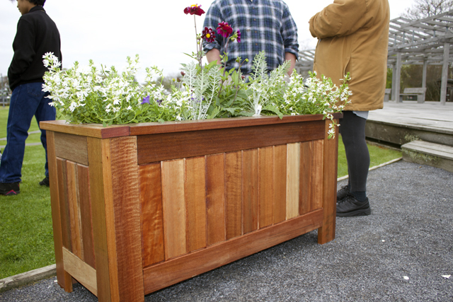 The first planter box, which was placed in Mitchell Park Thursday morning. The other 19 will be put out around Front and Main Streets at a later date. (Credit: Nicole Smith)
