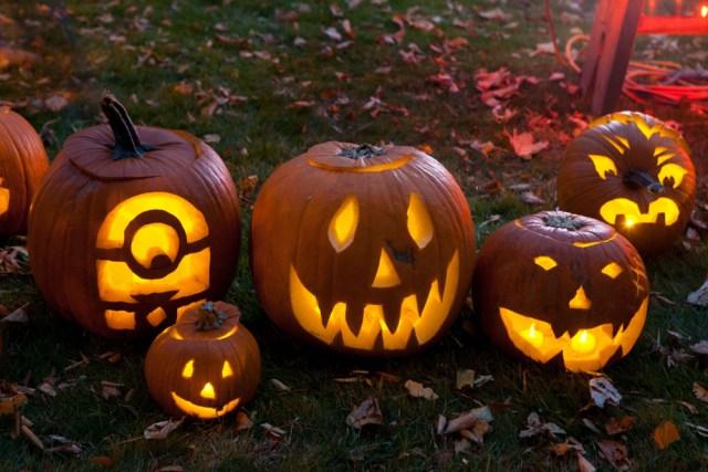SHD_pumpkins_ss_04