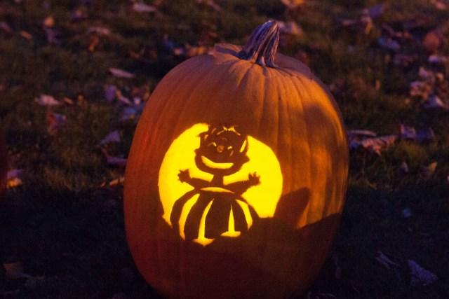SHD_pumpkins_ss_09