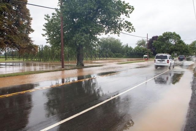 Flooded roads near Raphael Vineyard in Peconic. (Credit: Katharine Schroeder)
