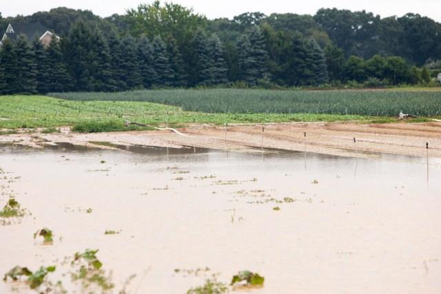 Flooding on Wells Road. (Credit: Katharine Schroeder)