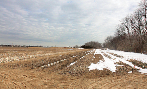 The Town recently purchased these 16 acres of farmland across from Lucas Ford on Hortons Lane in Southold for preservation.  (Credit: Barbaraellen Koch file photo)