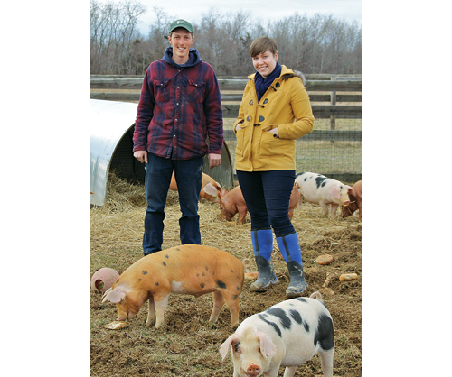 Thomas and Brianne Hart purchased their Main Road farm in Southold in December. (Credit: Carrie Miller)