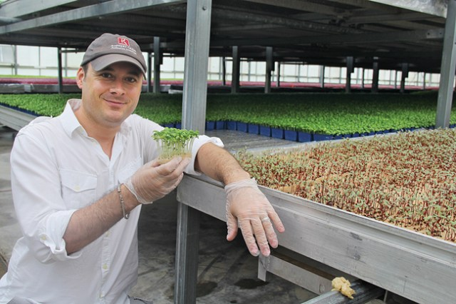 Nicholas Mazard, director of sales and marketing for Koppert Cress USA, explained that natural fiber is used instead of soil to grow  microgreens, enabling the live plant products to arrive at restaurants without bringing 'dirt into their kitchens.' (Credit: Carrie Miller)