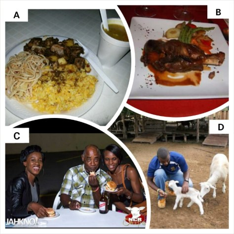 A. Hawaiian Lamb & Lamb Soup (29/4/15); B. Lamb Shank at Caffe da Vince; C. Patrons enjoying Flambé; D. Neville Graham, a Dir. Of NCR Sheep Ltd. at work on the farm