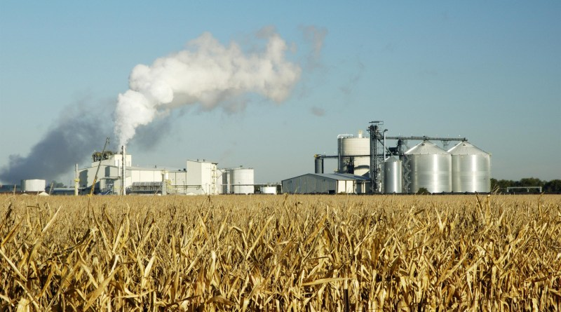 India Sugar Mills Supply 51 Crore Litres of Ethanol Made from Molasses