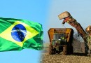 Brazil's Ethanol Industry May Be Heat Up Due to Chinese's Demand