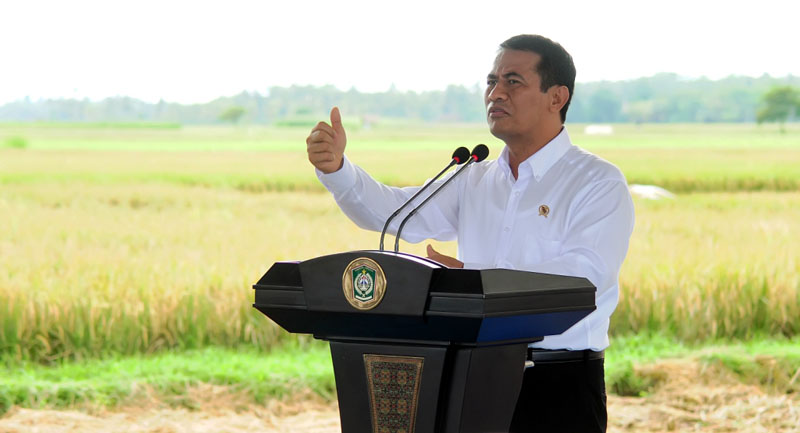 Indonesia Aims to Set 15 Sugar Factories in The Next 5 Years to Respond Domestic Sugar Demand