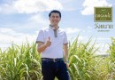 From Organic Cane to Organic Sugar to Reduce Costs, Boost More Value & Income for Farm Owners