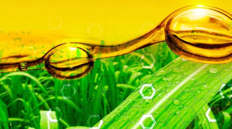 เเนวทางการเพิ่มประสิทธิภาพการผลิตเอทานอลไทย มุ่งเพิ่มรายได้ปีต่อปี