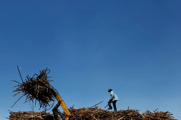Philippines sugar sector faces bitter realities