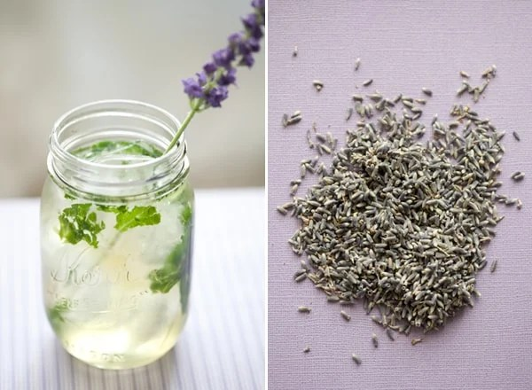 LavenderMojito