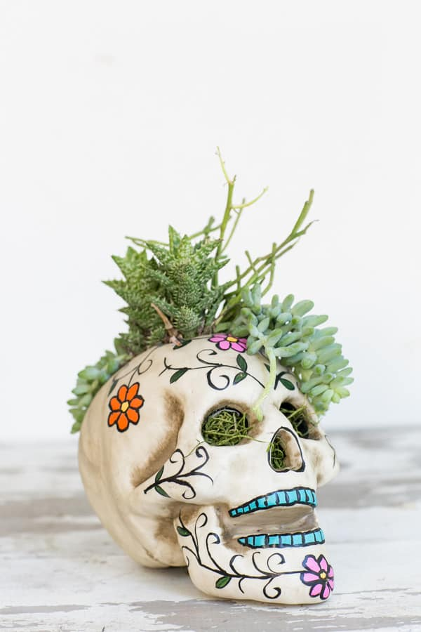 HalloweenSkullPlanter-3