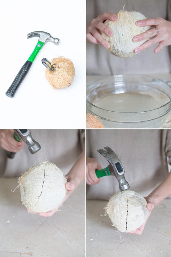 DIY-coconut-bowl-1