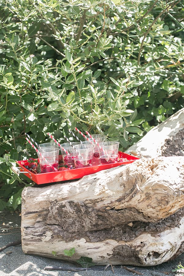 Seedling_Party_Box_11