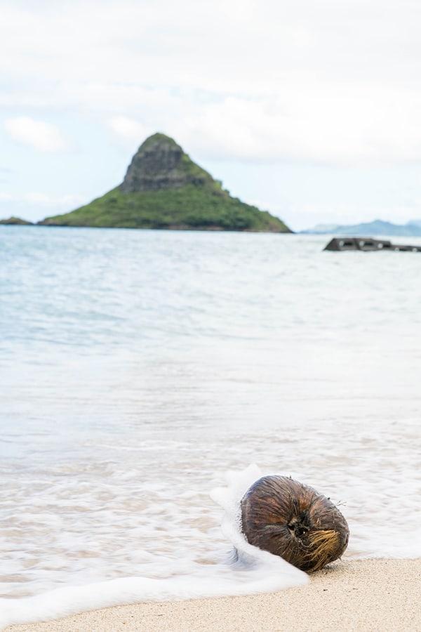 Hawaii_Oahu_20