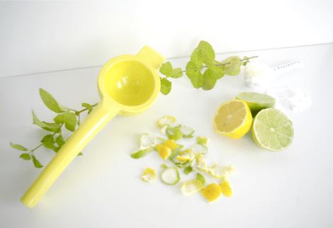 diy organic citrus scrub body