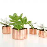 DIY Mini Copper Planters and organizers