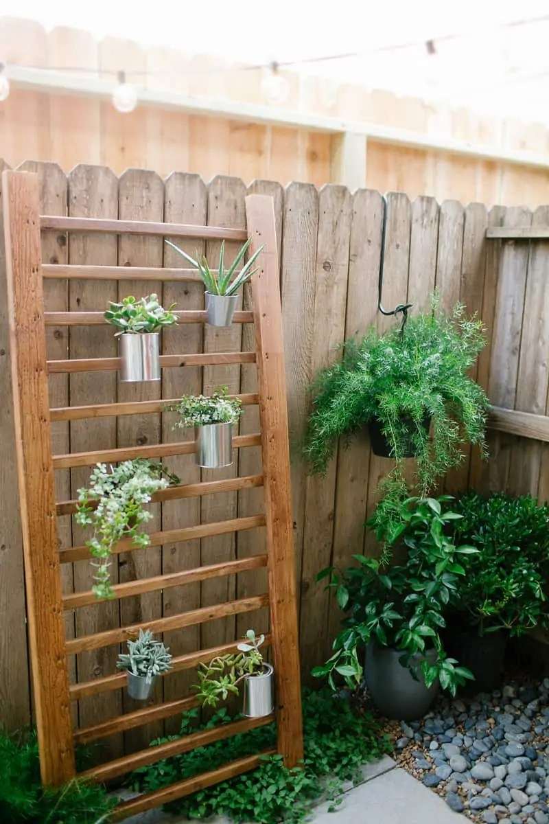 DIY // Outdoor Succulent Wall Accent on Backyard Wall Decor Ideas  id=46835