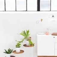 DIY acacia wood plant stand | sugar & cloth