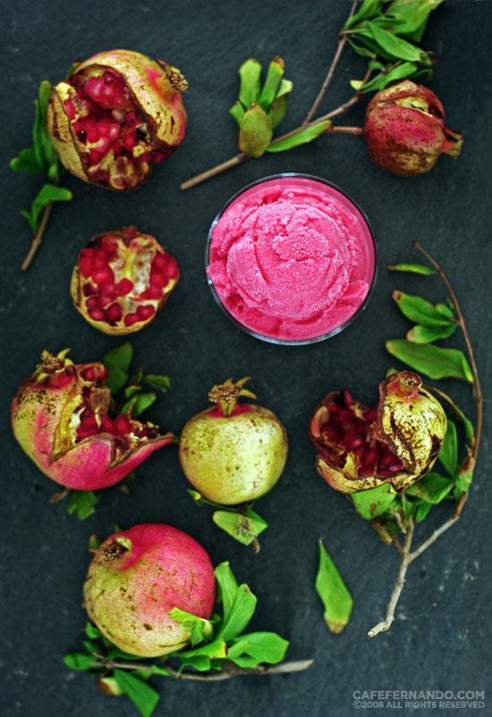 recipe for pomegranate frozen yogurt
