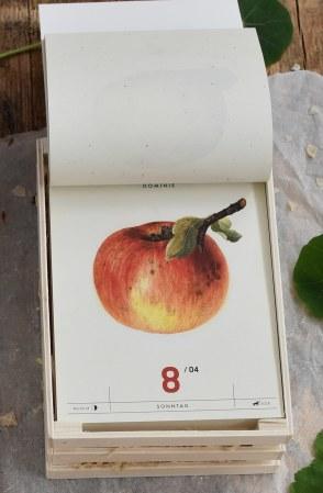 Apfelkalender4