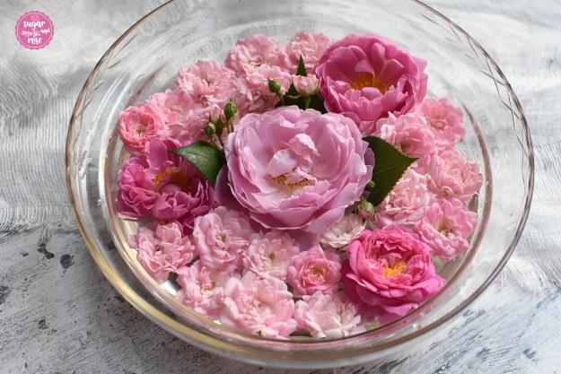 Schale-mit-Rosen