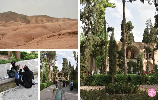 Bagh-e Fin Garten