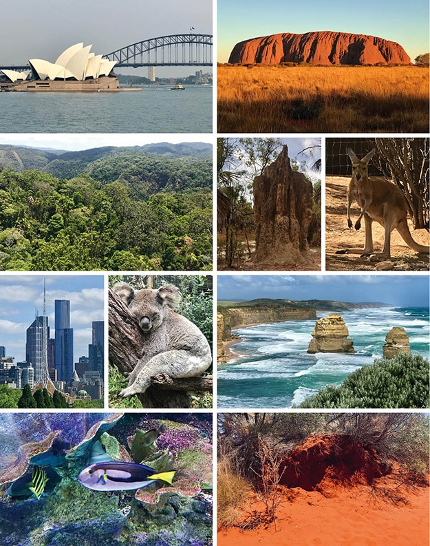 Zusammenstellung einiger Australienbilder: Oper in Sydney, Uluru beim Sonnenuntergang, Regenwald, Termitenhügel, Känguruh, Hochhäuser von Melbourne, schlafender Koala auf Baum, Felsen und Brandung an der Great Ocean Road im Süden Australiens, bunte Fische im Great Barrier Reef und rote Erde im Outback