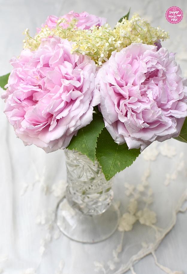 Drei rosa Blüten der Rose Archiduchesse d'Autriche sowie ein Zweig weiße Holunderblüten in einer kleinen Bleikristallvase mit Fuß.