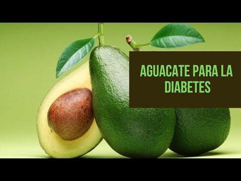 Conoce Los Enormes Beneficio Del Aguacate Para Personas Con Diabetes