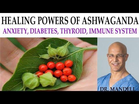 THE HEALING POWER OF ASHWAGANDA FOR ANXIETY, HYPOTHYROID, IMMUNE, DIABETES, HEART, BRAIN