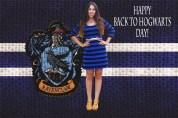 Ravenclaw Inspired Blue Stripe Dress