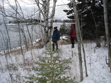 Winter Tree ID Workshop @ Limnology Lab | Duluth | Minnesota | United States