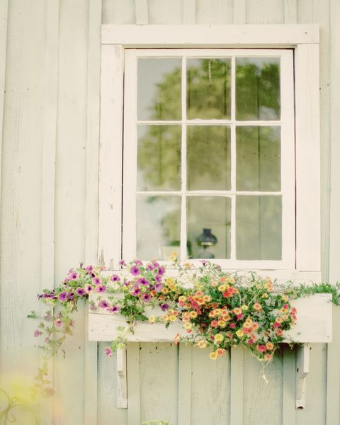 pretty window